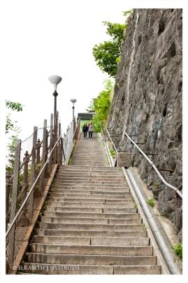 Stairway to heaven DSC_2975